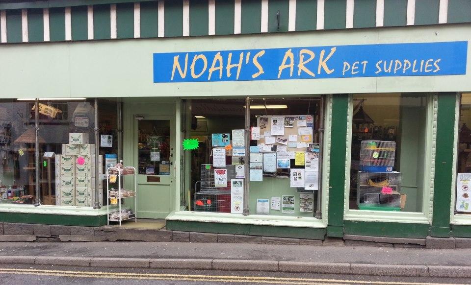 noahs ark shop front