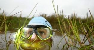 Bog-Snorkelling-Llanwrtyd-Wells